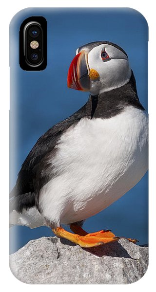 My Best Side.. IPhone Case