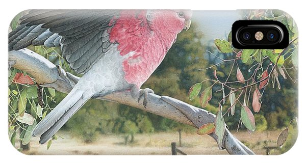 My Country - Galah IPhone Case