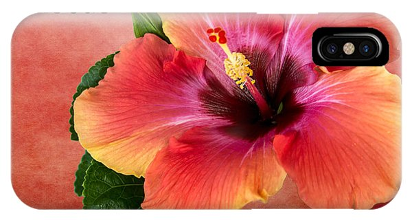 My Fiesta Hibiscus IPhone Case