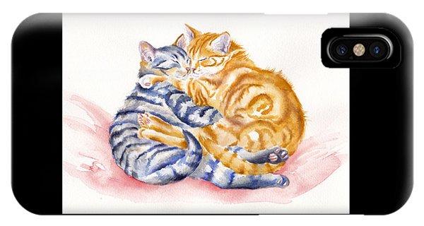 Cat iPhone Case - My Furry Valentine by Debra Hall