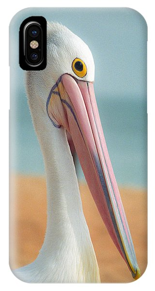 My Gentle And Majestic Pelican Friend IPhone Case