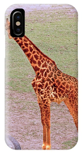 My Giraffe IPhone Case