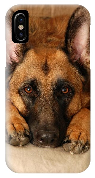 My Loyal Friend IPhone Case