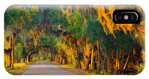 Myakka Canopy Road At Sunset IPhone Case