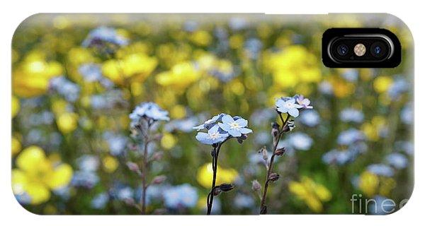 Myosotis With Yellow Flowers IPhone Case