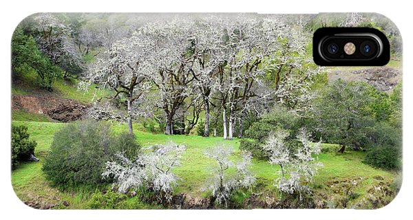 Mysterious Landscape In Sonoma County IPhone Case