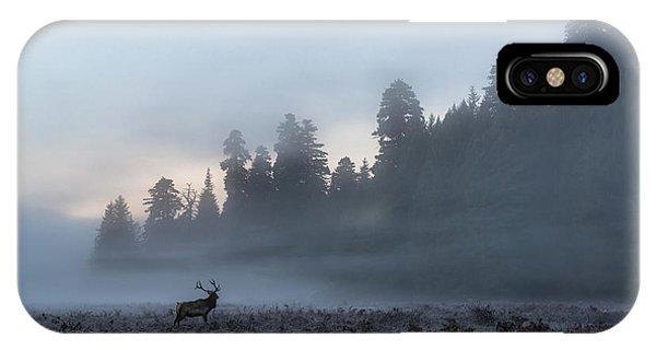 Mystic Elk IPhone Case
