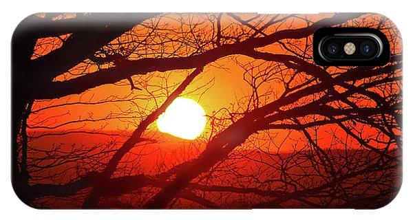 Naked Tree At Sunset, Smith Mountain Lake, Va. IPhone Case