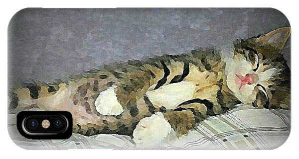 iPhone Case - Nap Time by Raven Hannah