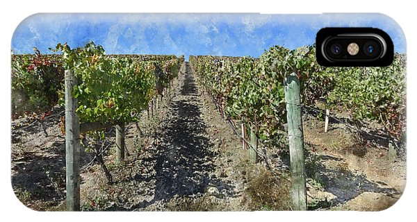 Napa Valley Vineyard - Rows Of Grapes IPhone Case