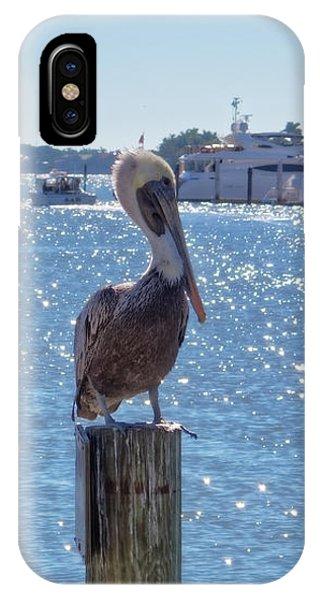 IPhone Case featuring the photograph Naples Pelican by Lars Lentz