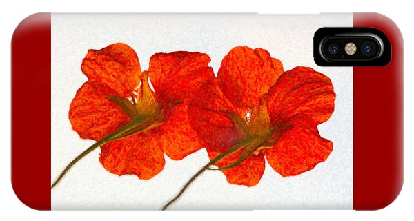 Nasturtiums On White IPhone Case