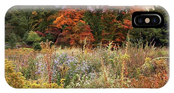 Golden Gardens iPhone Case - Native Garden Sunset by Jessica Jenney