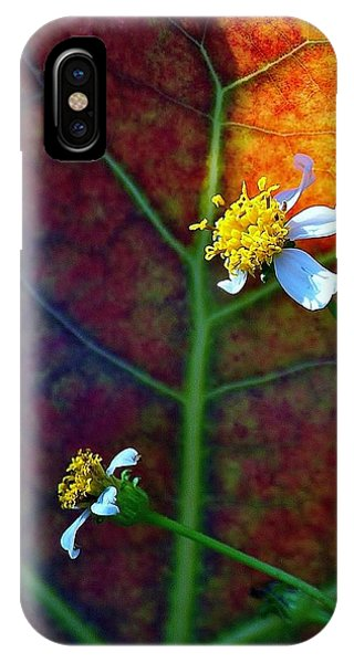 Natural 10 17g IPhone Case