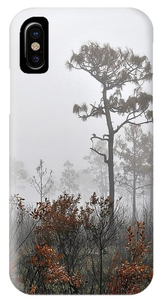 Natural 2 13 IPhone Case