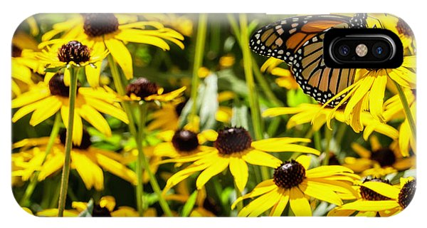 Monarch Butterfly On Yellow Flowers IPhone Case