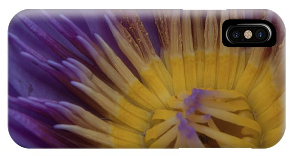 Natural Colors IPhone Case