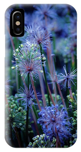 Natural Fireworks 4791 H_2 IPhone Case
