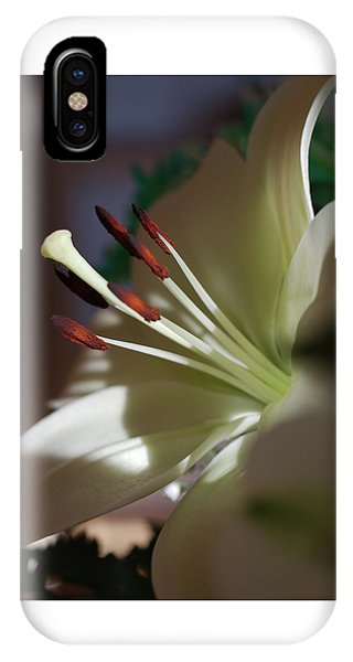 Naturally Elegant IPhone Case