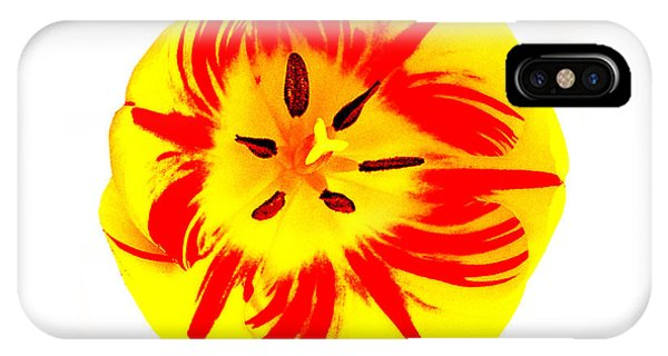 IPhone Case featuring the photograph Nature The Abstract Painter by Roger Bester