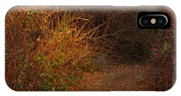 Nature Trail 2 IPhone Case