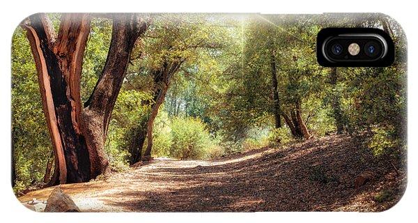 Nature Trail IPhone Case