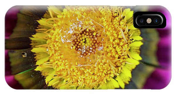 IPhone Case featuring the photograph Natures Eye by Wendy Wilton