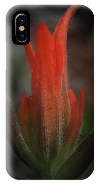 Nature's Fire IPhone Case