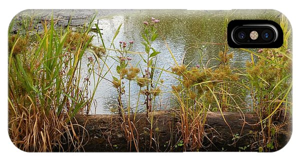 Natures Flower Pot IPhone Case