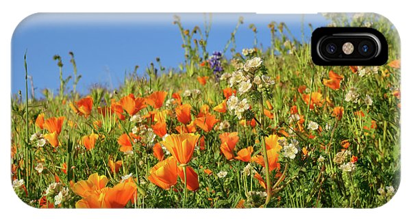 iPhone Case - Nature's Garden Of Golden Poppies by Kathy Yates