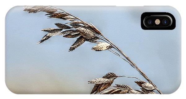 Nature's Hummingbird IPhone Case