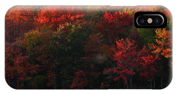 Nature's Palette IPhone Case