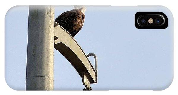 Nature's Philadelphia Eagle IPhone Case