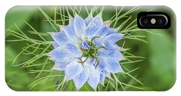 IPhone Case featuring the photograph Natures Star by Wendy Wilton