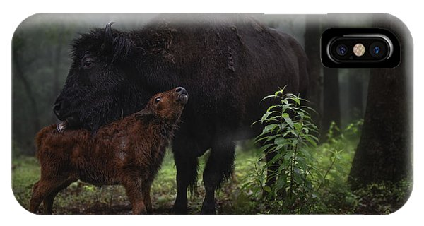 Natures Tender Moments IPhone Case