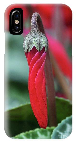 Natures Umbrella IPhone Case