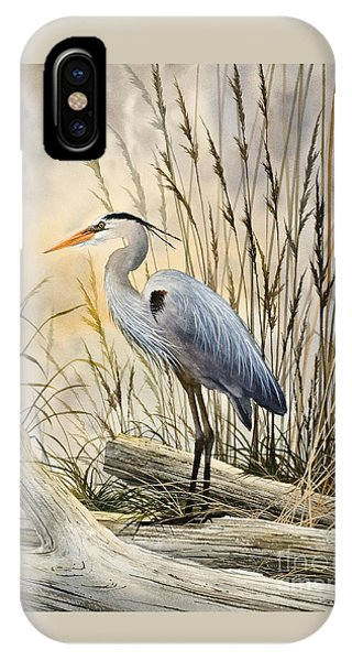 Bird iPhone Case - Nature's Wonder by James Williamson