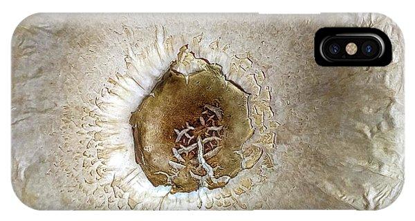 Nature's Zen  Phone Case by Steven Digman