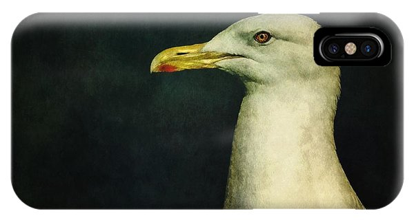 Seagull iPhone Case - Naujaq by Priska Wettstein