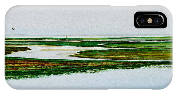 Nauset Osprey IPhone Case