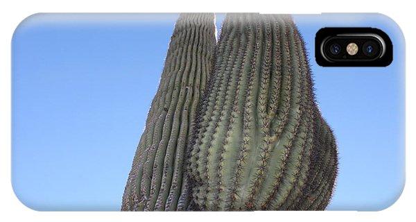 IPhone Case featuring the photograph Wickenburg Saguaro  by Antonio Romero