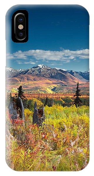 Nelchina Basin IPhone Case