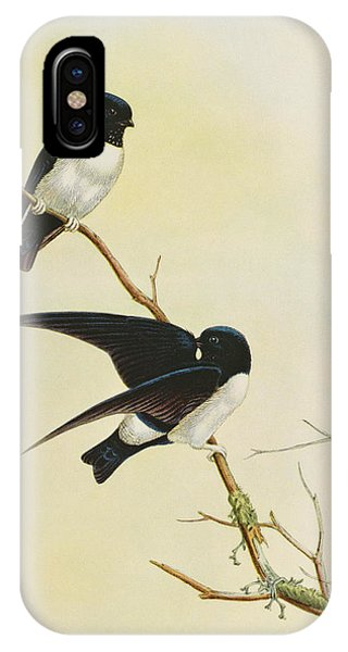 Swallow iPhone Case - Nepal House Martin by John Gould