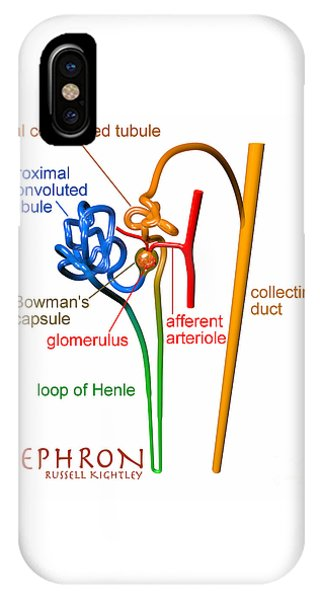IPhone Case featuring the digital art Nephron Labels #1 by Russell Kightley