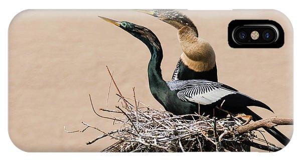 Nesting Anhinga Couple IPhone Case