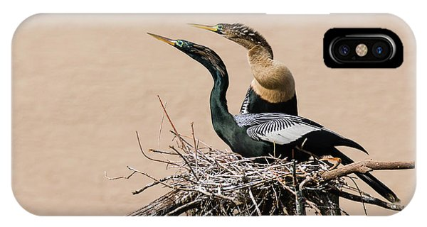 Nesting Anhinga Couple IPhone Case