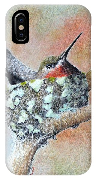 IPhone Case featuring the drawing Nesting Anna by Phyllis Howard