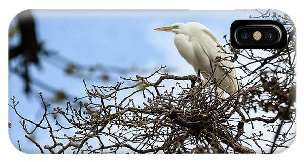 Nesting Egret IPhone Case
