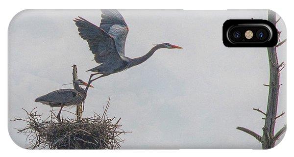 Nesting Great Blue Heron IPhone Case