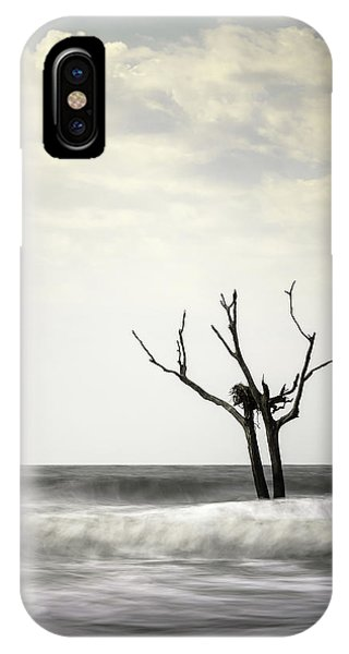 Osprey iPhone Case - Nesting by Ivo Kerssemakers